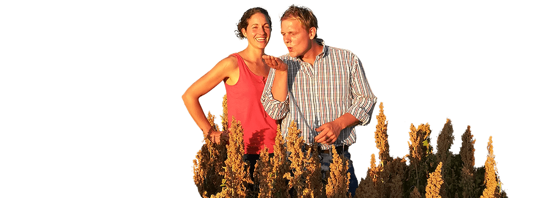 Marion et Damien dans un champ de Quinoa.